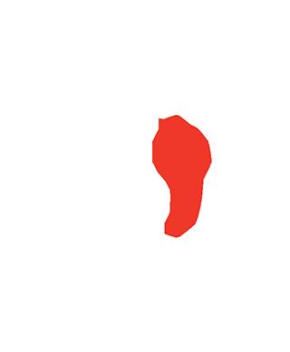 System Integrator Program - Customisation